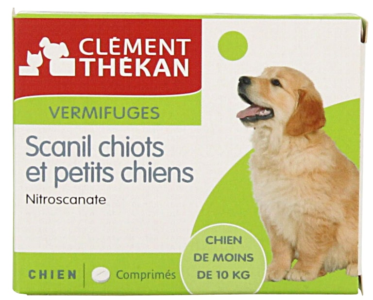 scanil-chiots